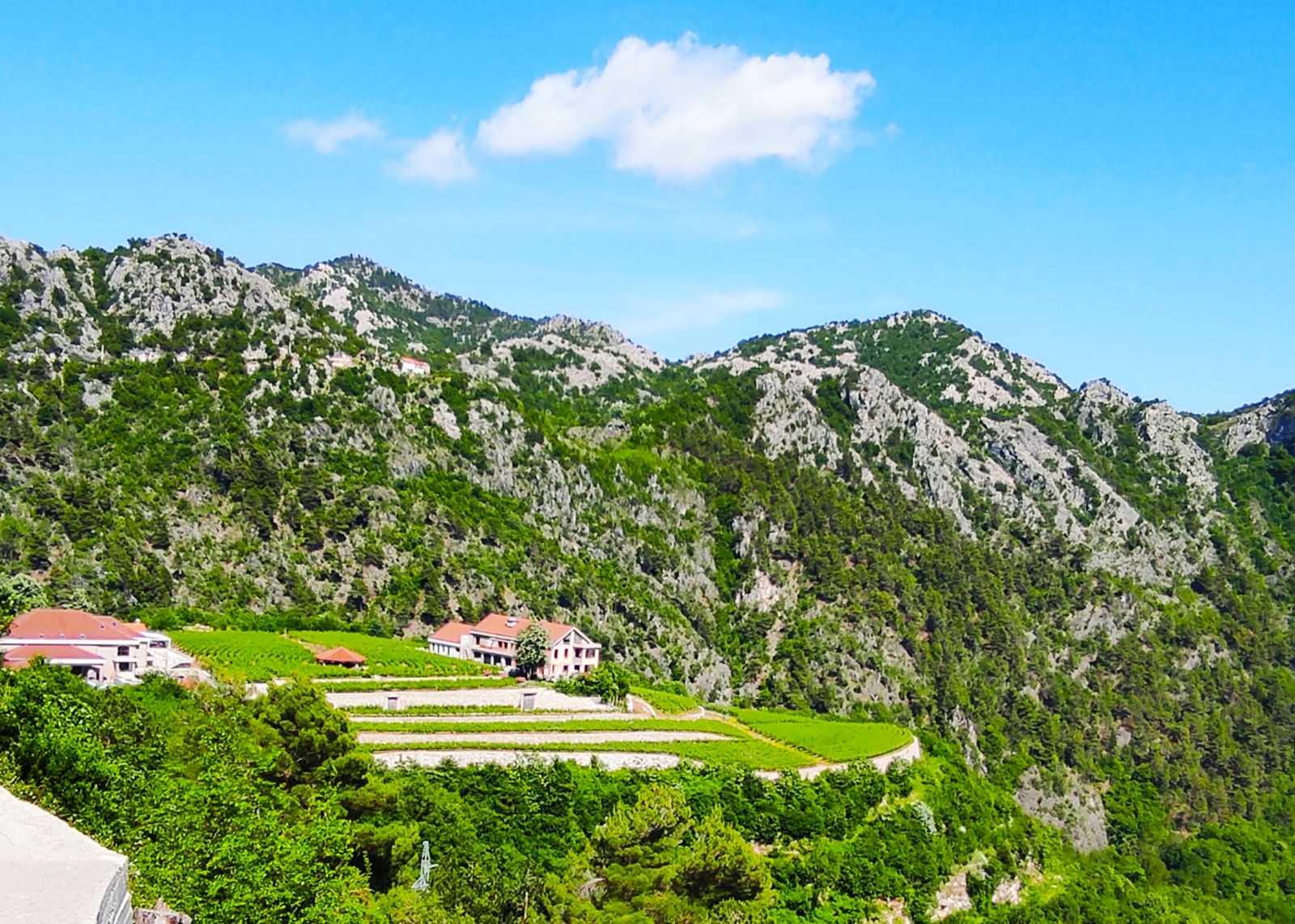 Panoramic view on Knjaz Lipovac winery AVE Tours
